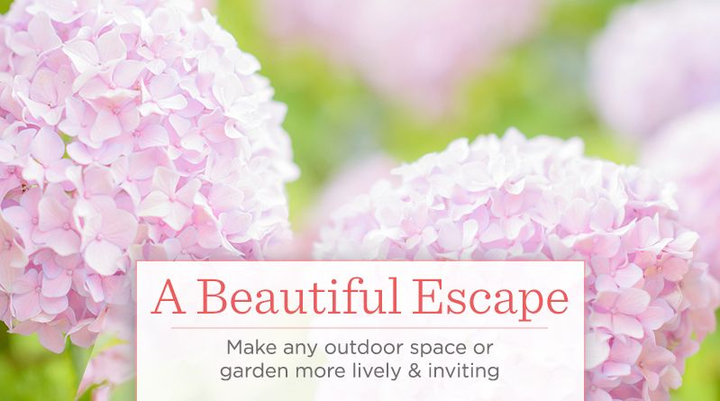 A Beautiful Escape.  Make any outdoor space or garden more lively & inviting