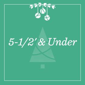 5-1/2' & Under