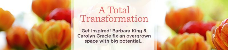 A Total Transformation - Get inspired! Barbara King & Carolyn Gracie fix an overgrown space with big potential…