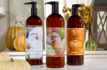 WEN Fall Cleansing Conditioner