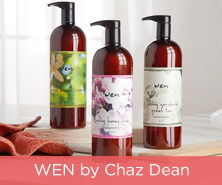 WEN Spring Cleansing Conditioner
