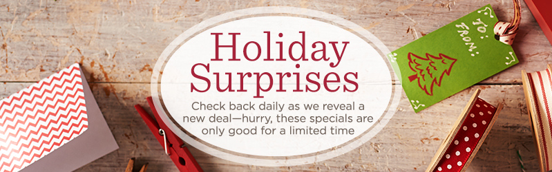 Holiday Surprises, Check back daily as we reveal a new deal - hurry, these specials are only good for a limited of time