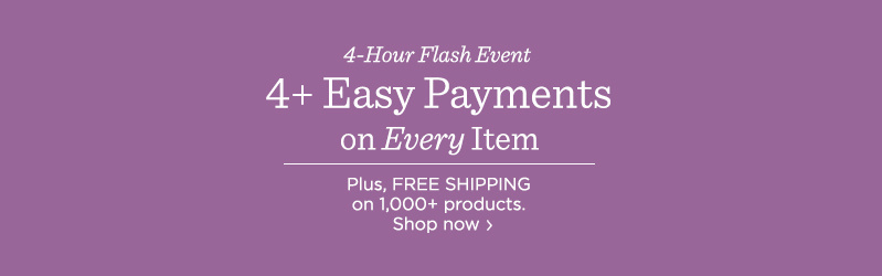 4+ Easy Payments on Every Item