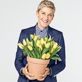 Ellen DeGeneres Décor