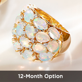 12-Month Option