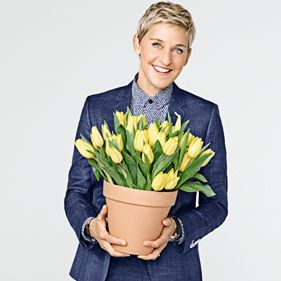 All Ellen Décor on Easy Pay