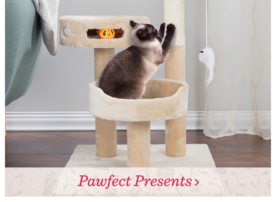 Pawfect Presents