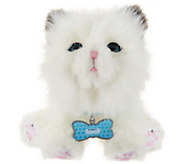 Little Live Pets Cuddles My Dream Kitten Animated Plush - T35417