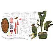 Anatomics Dinosaur - T123445