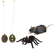 Set of Two Remote Controlled Tarantula & Rat By:Uncle Milton - T34352