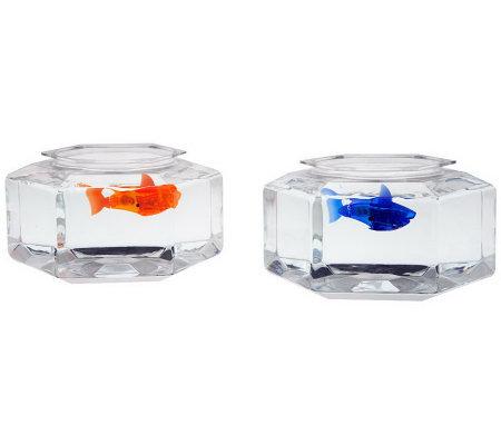 Hex bug set of 2 aquabots robotic fish with fish bowls for Robo fish tank