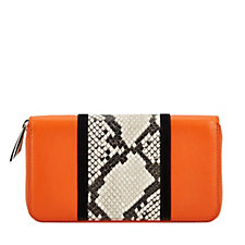 Amanda Wakeley The Dylan Leather Python Stripe Zip Around Purse