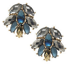 Lonna & Lilly Crystal Cluster Stud Earrings