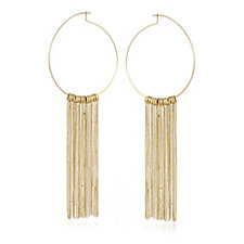 Pilgrim Horizons Hoop Earrings