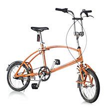 Bigfish Quick Folding Bicycle