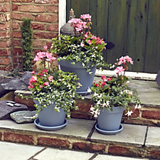 Plants2Gardens 12 x Garden Ready Summer Plants with 3 Planters & Saucers
