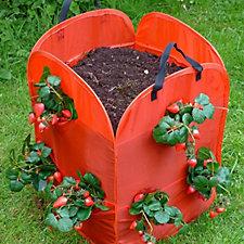 GardenSkill Set of 2 Pop Up Strawberry Planters