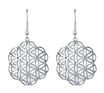 Eternal Open Work Design Drop Earrings Stainless Steel - 649001