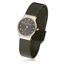 Skagen Ladies Two Tone Stainless Steel Brushed Dial Mesh Strap Watch