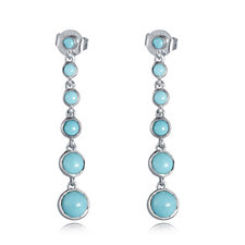 698647 - Sleeping Beauty Turqoise Drop Earrings Sterling Silver