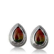Canadian Ammolite Triplet Teardrop Earrings Sterling Silver