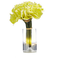 Home Reflections Amaryllis Pre-lit in Silver Ombre Glass Vase