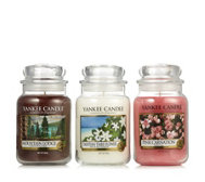 Yankee Candle Set of 3 Take Me There USA Large Jars