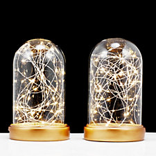 Home Reflections Set of 2 Starry Domes with Light Strand