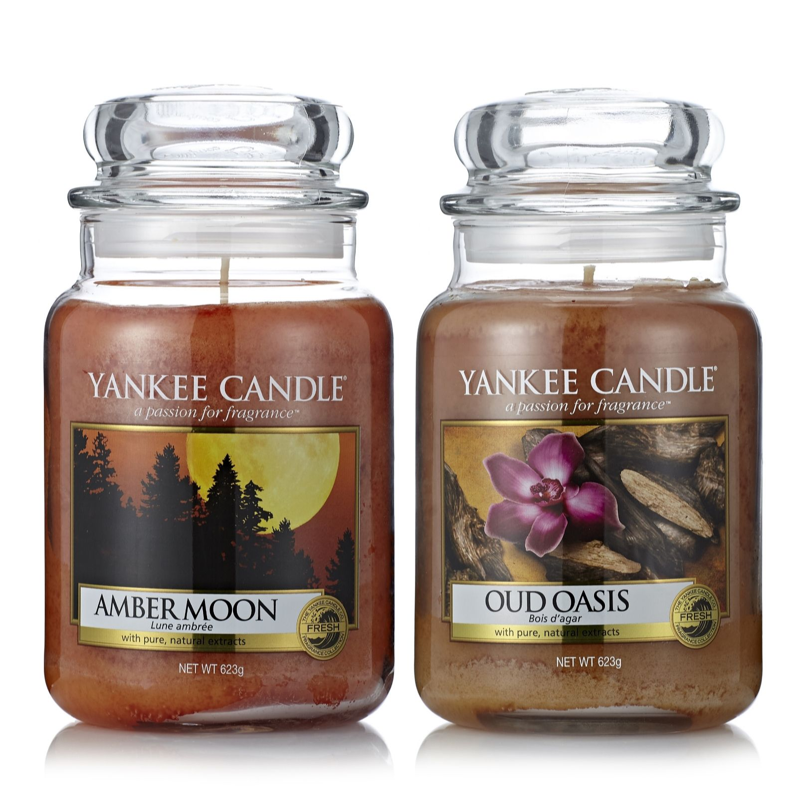 Yankee Candle Set of 2 Amber Moon & Oud Oasis Large Jars