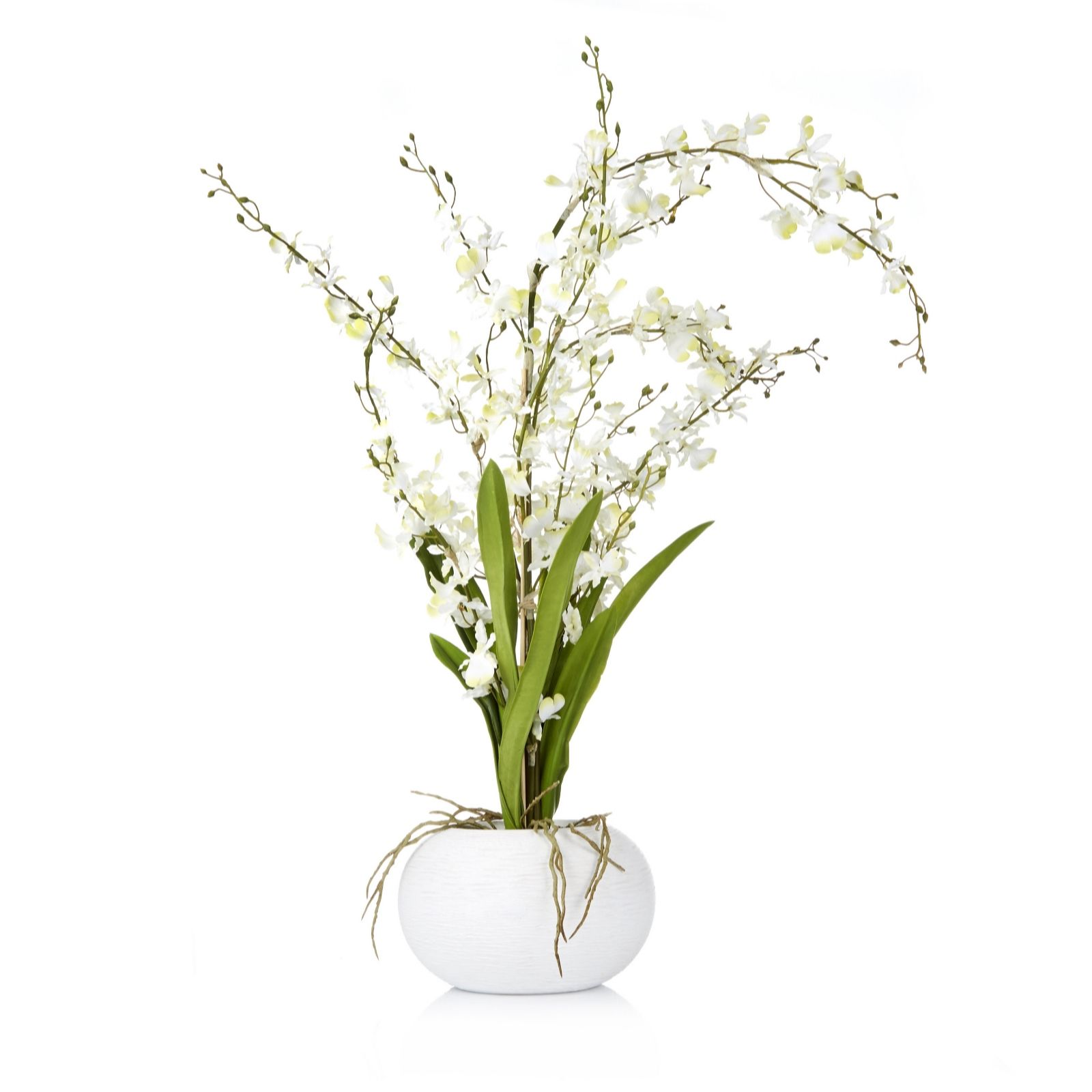 Peony Oncidium Orchid in White Textured Bowl