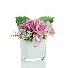 708824 - Peony Real Touch Hydrangeas & Foliage in White Glass Cube
