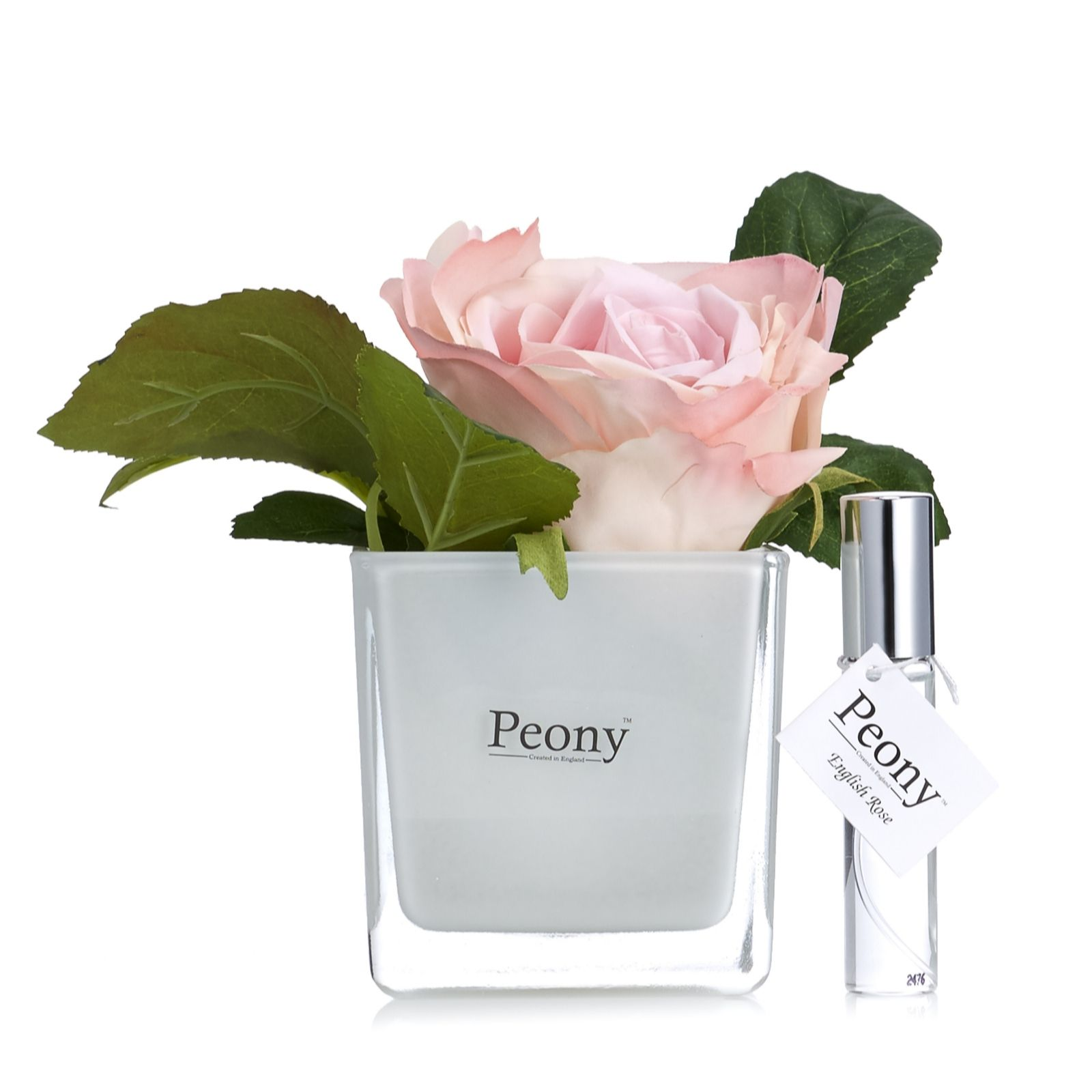 Peony Rose in White Cube with Fragrance Spray Mist in Giftbox