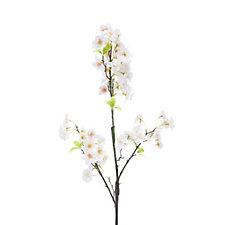 Peony Set of 3 Peach Cherry Blossom Stems