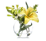 Peony Lily Freesias & Foliage in Fishbowl