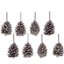 Alison Cork Set of 8 Graceful Pine Cone Decor