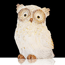 Bella Notte Pre-lit Snow Owl with LED Lights