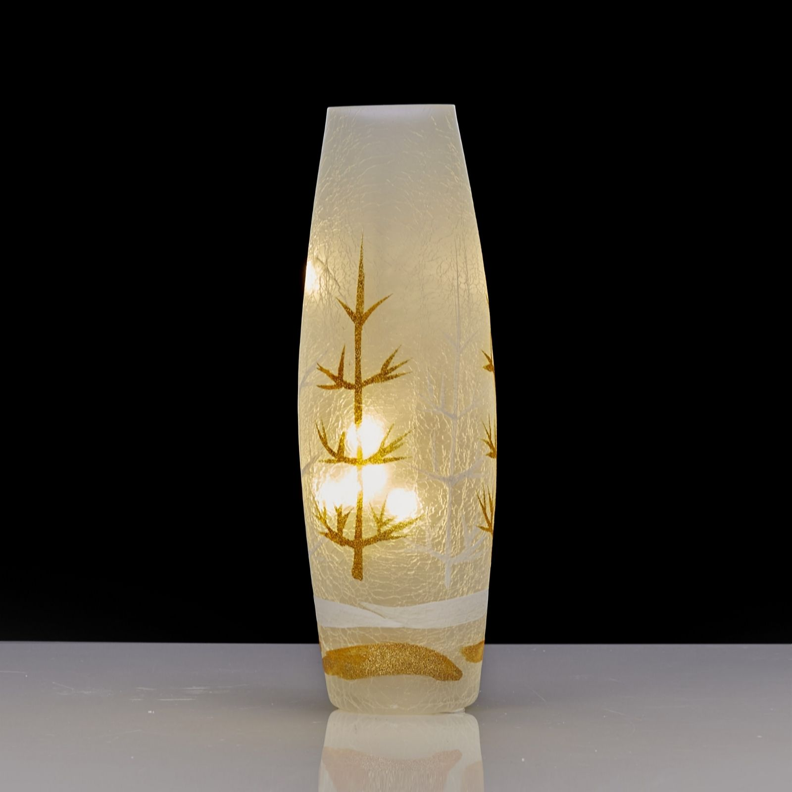 Home Reflections Festive Frosted Glass Vase with LED String Lights - 704759 QVCUK.com