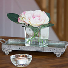 Peony Rose in a Clear Glass Cube