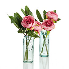 Peony Set of 2 Peonies & Foliage in Ruckley Crest Bottle Vases