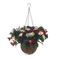 705475 - Bethlehem Lights Petunina Hanging Basket with 20 LED Lights