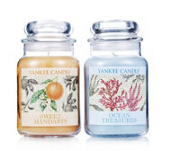 Yankee Candle Set of 2 Botanical Large Jars