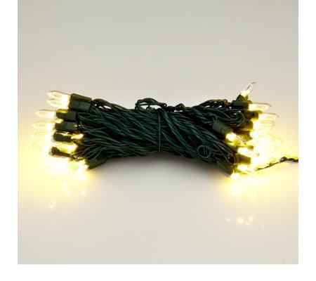 bethlehem lights battery operated 50 led mini light strand. Black Bedroom Furniture Sets. Home Design Ideas