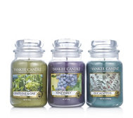 Yankee Candle Set of 3 USA Special Vineyard Collection Large Jars