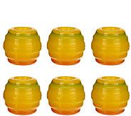 Enoz Set of 6 Indoor Fruit Fly Traps - V33230