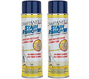 Set of 2 18oz Aerosol Professional Stain Remover by Campanelli - V35243