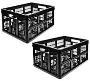 Clever Crates Set of 2 Large Collapsible Utility & Storage Crates - V33465