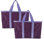 Snapbaskets Set of 2 Shopping & Utility Baskets by CleverMade