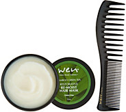 WEN by Chaz Dean 8 oz Rice Re-Moist Mask - A302539
