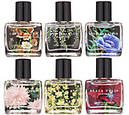 NEST Fragrances 6-Piece Eau de Parfum Dabber Discovery Kit - A345744
