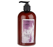 WEN by Chaz Dean Choice of 16 oz Cleansing Conditioner - A89153